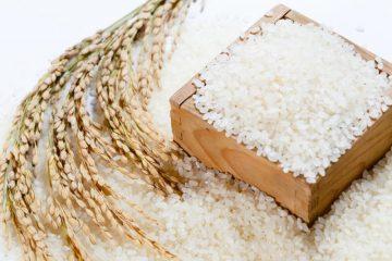 7 Vị thuốc quý từ cây lúa ít ai biết tới