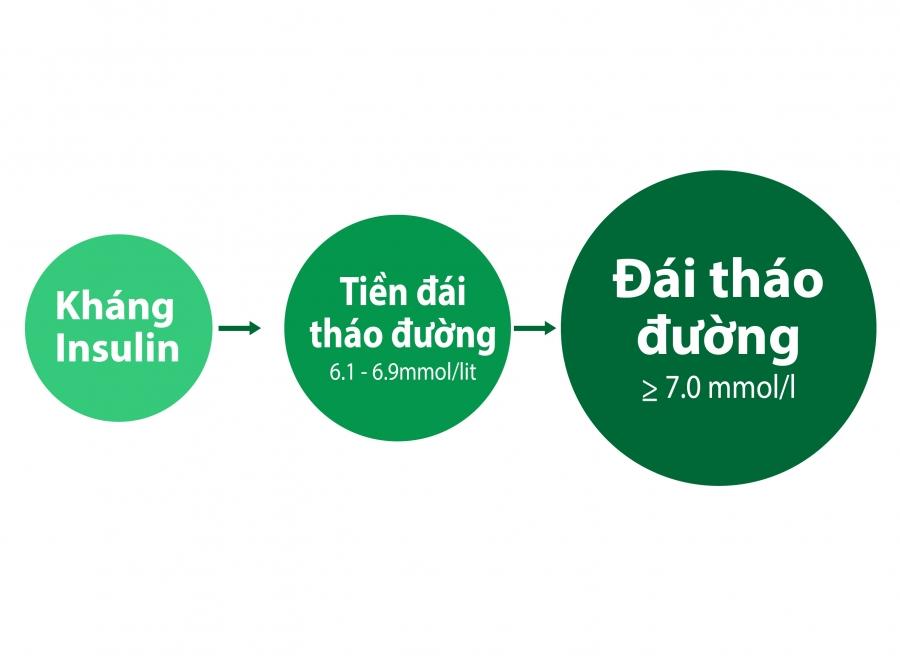 tien-dai-thao-duong